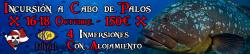 Banner Palos