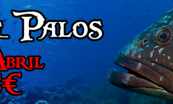 banner_palos_13abril