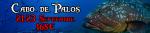 Cabo de palos 21 sept